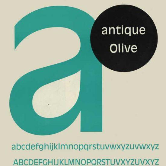 antique olive specimen - Roger Excoffon