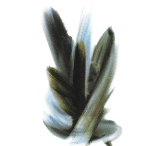 Signe bleu, gouache - Roger Excoffon